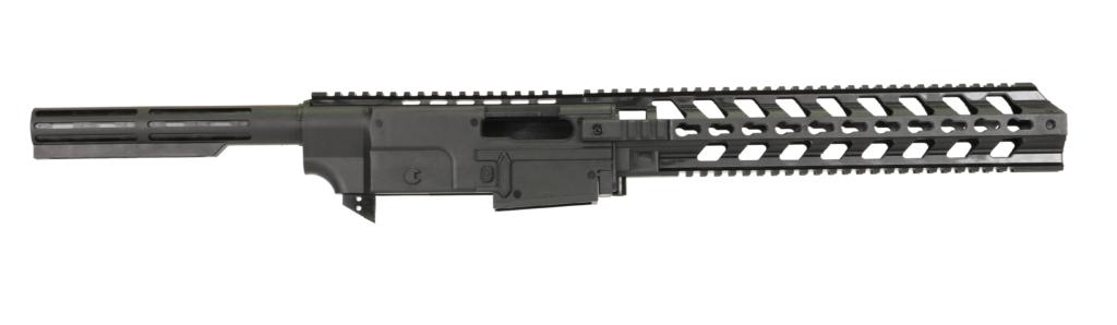 Chis System For Ruger 10 22 Gungner